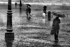 Rain in Rome (Rui Palha's Style)