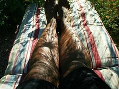 Day 8 -My legs
