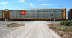 Auto rack car carrier trains