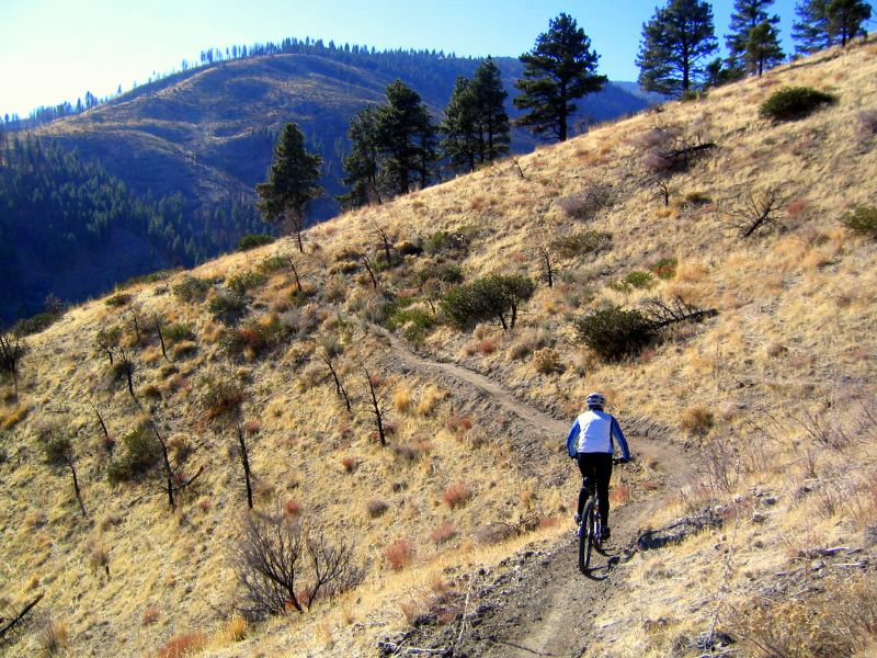 The Baldy Green Trail