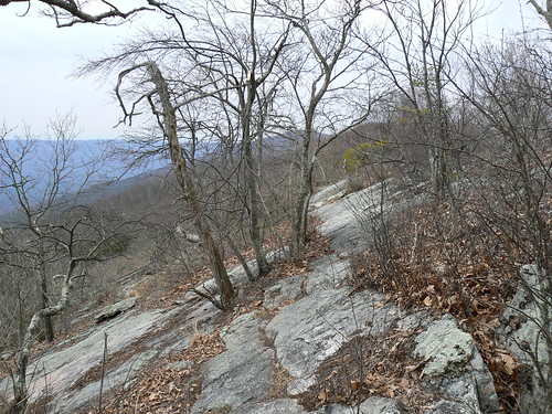 Sinking Creek Mountain - Sample of Slanty Rocks