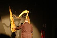 Rhodri Davies Singes Harp Parts