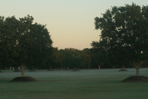 Mist over the baseball fields