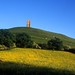 glastonbury tor www.acrossthedivide.com