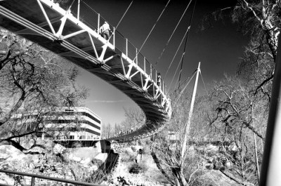 Liberty Bridge Curve B&W