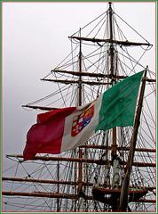 bandiera italiana per i mari