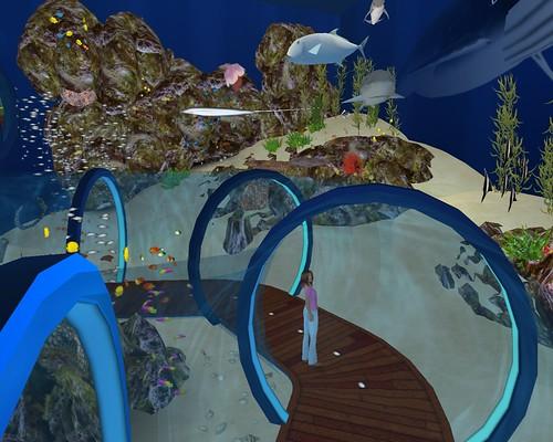 Splash Aquatics deep sea walkthrough