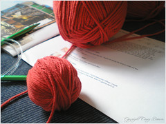 02.04.08 {yummy new yarn}