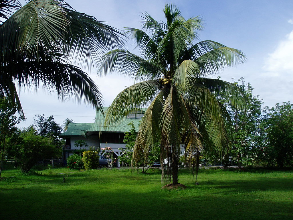 Watooka House on Demerara River 2008, Watooka, MacKenzie, Guyana