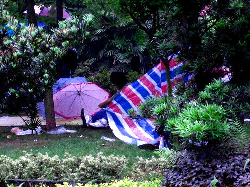 More makeshift camps in the garden