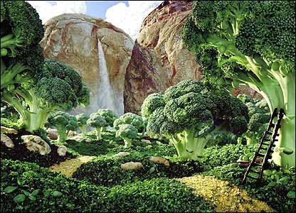CW_Foodscapes_broccoli_416x300jpg.jpg