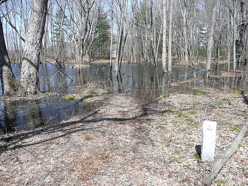 Flooded walking trail