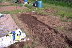 080420-allotment426