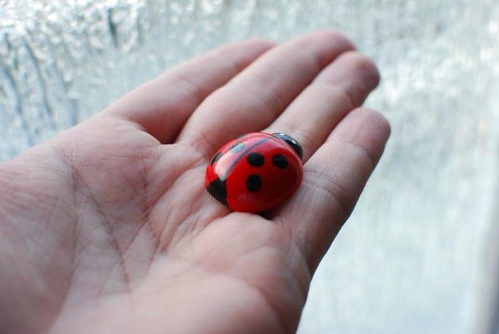 Caught a Bug - by Gubatron