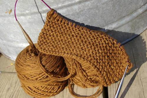 walnut yarn scholar collar
