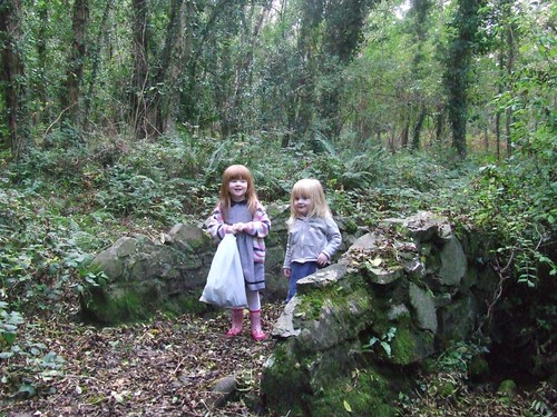 Stone Bridge in Garykennedy Woods