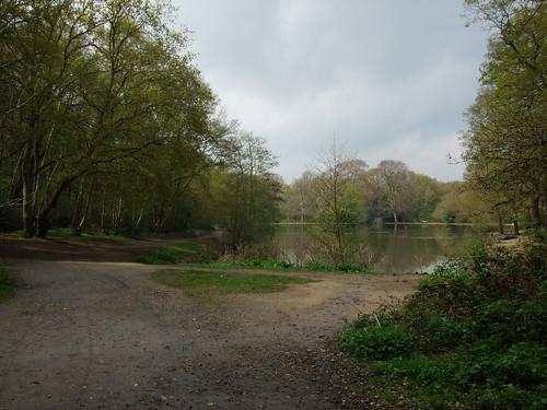 Queen's Mere, Wimbledon Common