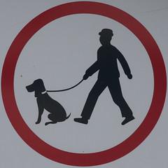 Keep dog on a lead