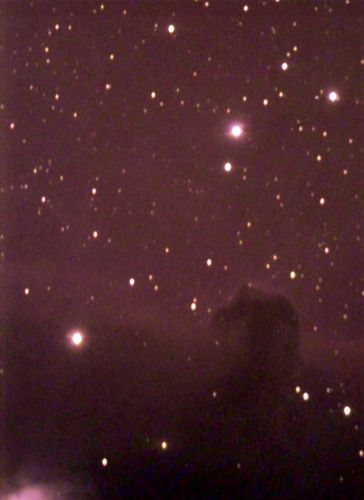 The Horsehead Nebula on 1/12/08