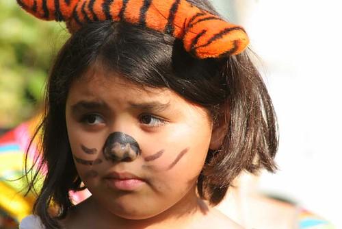 Lost tiger, reward