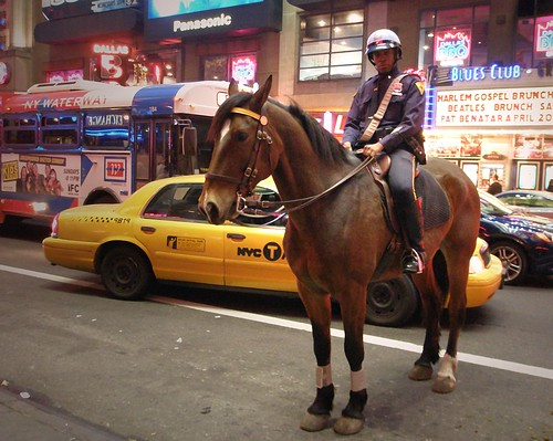 People in U.S.A. (Mounted police)