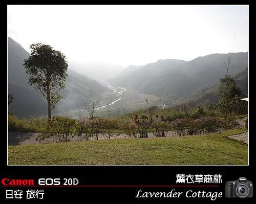 LavenderCottage_0049