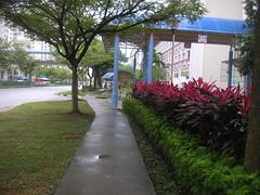Singapore Day 13 030