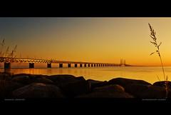 Scandinavian Sunset