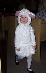 Lil' Sheep