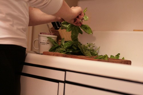 Removing basil leaves from stems
