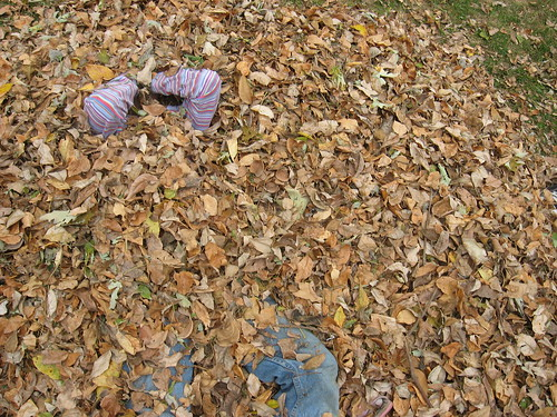 Attack of the Killer Leaves