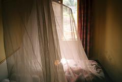 Malaria room