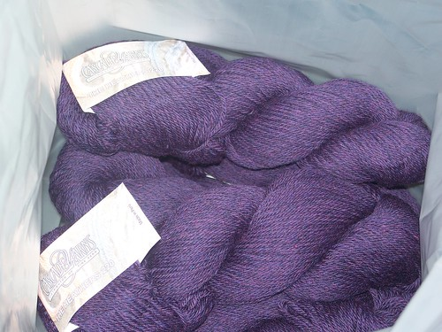 cascade 220 heather purple