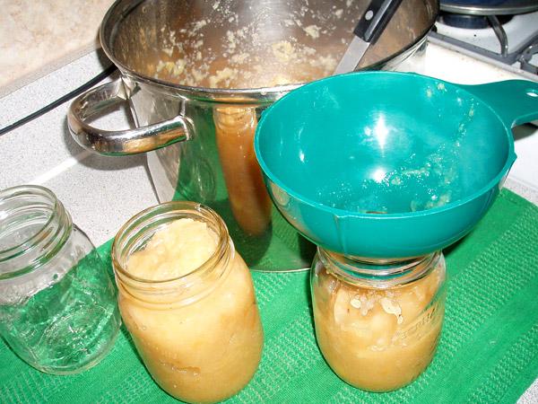 Homemade Applesauce, part 5 of 6