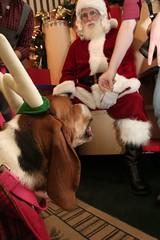 Santa and moose
