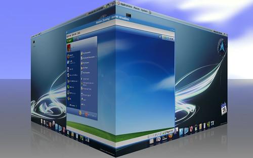 XP in Ubuntu