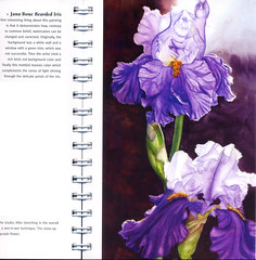 My irises in the Watercolor Flower Artist's Bible