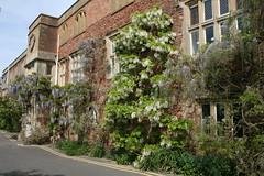 Cannington Centre, Bridgwater College