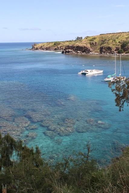 Beautiful Honolua Bay