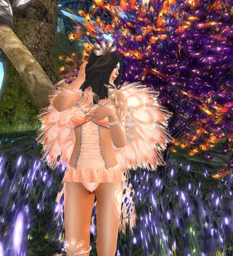 Angelwing_004
