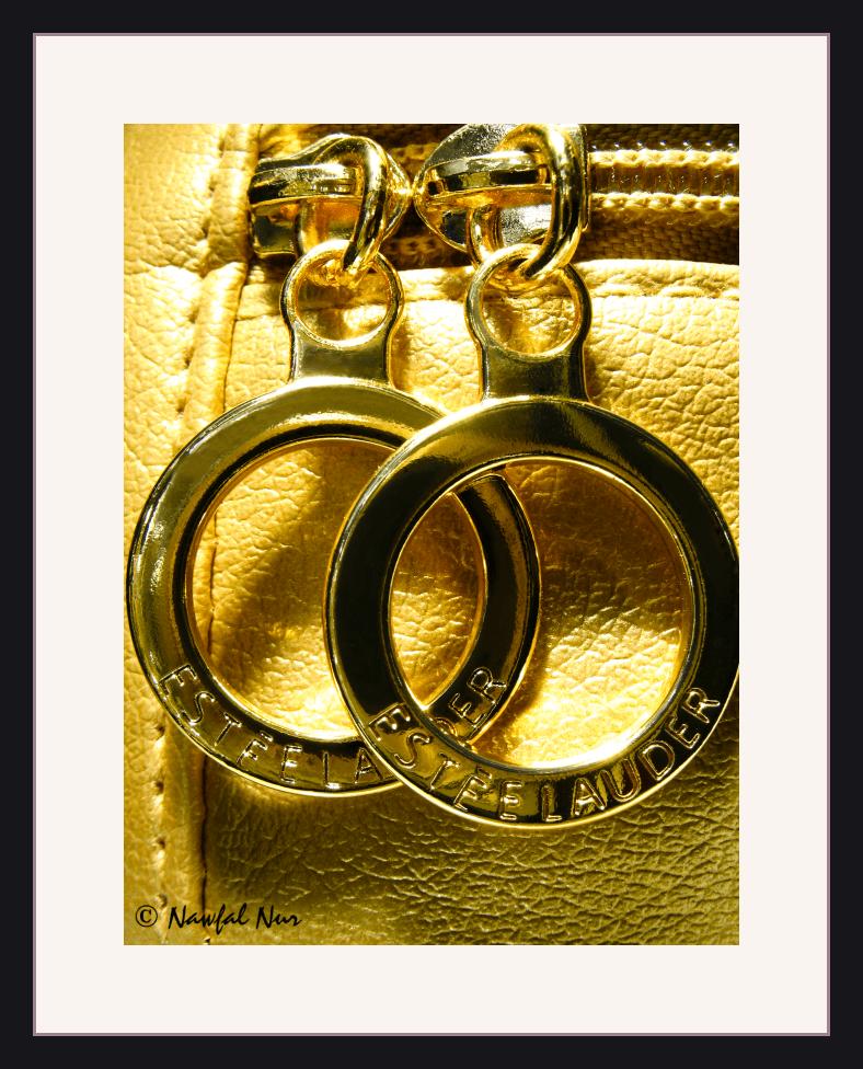 Estee Lauder Gold Cosmetics Case as