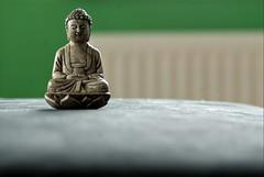 Gautama Buddha @ Home