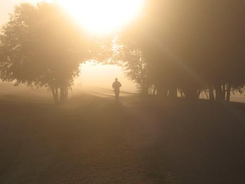 misty morning 8