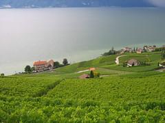 A storm over the Geneva Lake, Switzerland