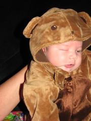 One-eyed baby bear