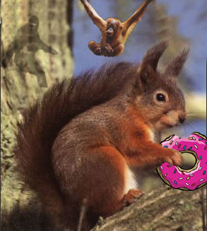 squirrel donut bigfoot orangutan