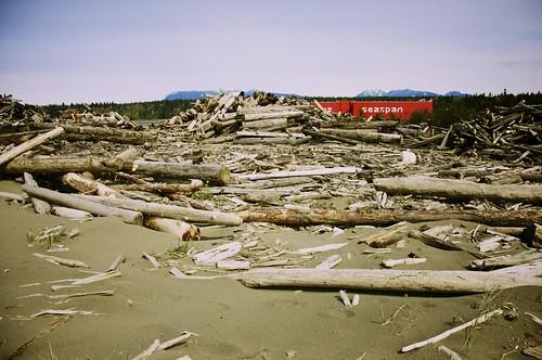 Iona Beach: April 2010