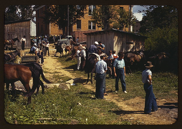 """Mountaineers and farmers trading mules and horses on """"Jockey St.,"""" near the Court House, Campton, Wolfe County, Ky. (LOC)"""