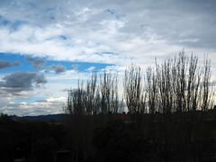 El Alba Semana Santa 08 083