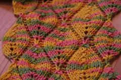 2008-02-11-variegated-candleflame-scarf-FO1